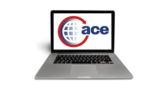 ACE Allows Importers to Monitor Surety Bond Status