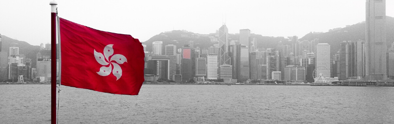 A Hong Kong Flag flies with a black and white city in the background.